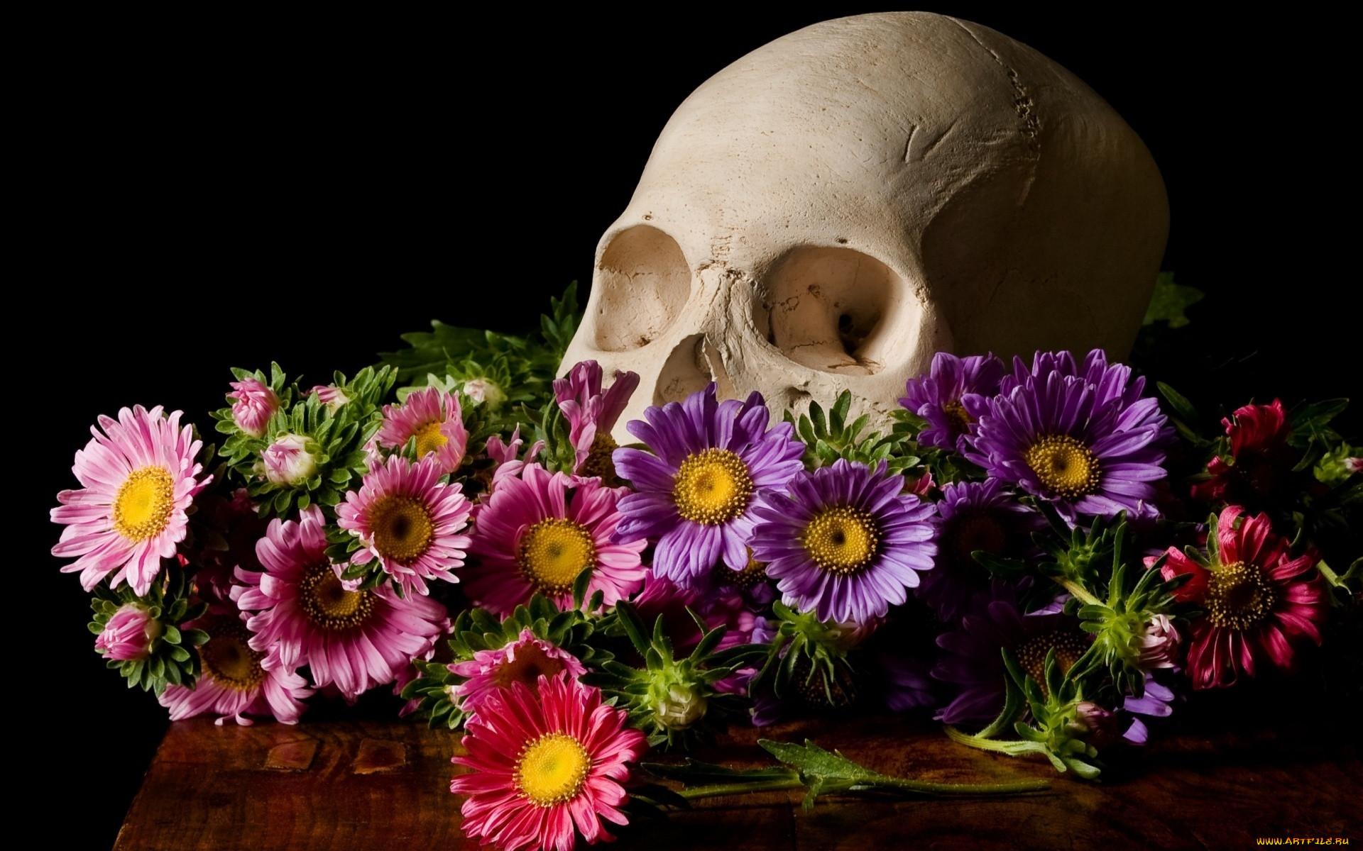 Обои цветы. Разное foto 13